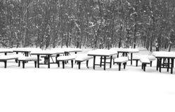 Picnic di inverno Fotografie Stock
