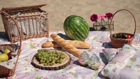 Picnic with different sorts of snacks on blanket stock video footage