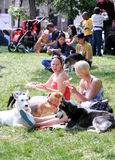 Picnic With Dogs Royalty Free Stock Photography