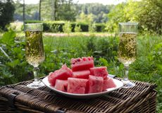 A picnic with a drink and fruit in the park on a sunny summer day royalty free stock photography