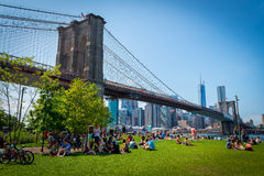 Picnic and family day under in Brooklyn Bridge park Royalty Free Stock Photo