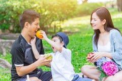 Picnic felice di festa della famiglia teenager asiatica immagini stock