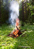 Picnic. Fire in the summer forest Royalty Free Stock Photos