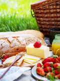 Picnic Food on green background Royalty Free Stock Photo