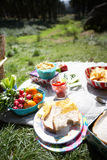 Picnic Food Laid Out On Blanket. In Sunshine Stock Photos