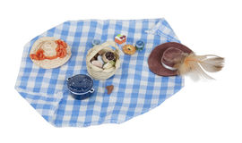 Picnic Food Laid out on Gingham Blanket Royalty Free Stock Photos