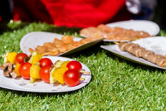 Picnic food, meat and vegetables Royalty Free Stock Photos
