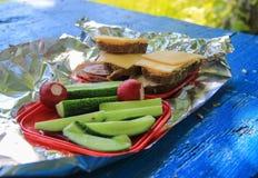 Picnic food Royalty Free Stock Photos