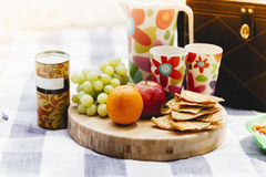 Picnic food setting Royalty Free Stock Photo