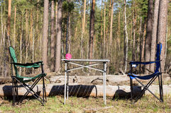 Picnic in the forest Stock Photo