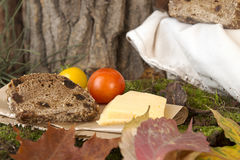 Picnic in forest. Rye bread, cheese slices and tomatoes Royalty Free Stock Photos