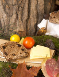 Picnic in forest. Rye bread, cheese slices and tomatoes Royalty Free Stock Images