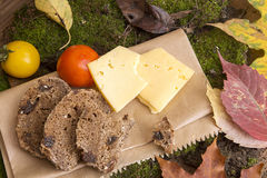 Picnic in forest. Rye bread, cheese slices and tomatoes Stock Photos