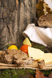 Picnic in forest. Rye bread, cheese slices and tomatoes Royalty Free Stock Photography