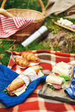 Picnic at forest Royalty Free Stock Photo