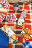 Picnic at forest Stock Photos