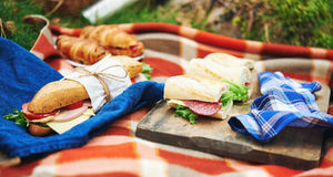 Picnic at forest Stock Photography