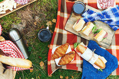 Picnic at forest Stock Image