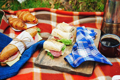 Picnic at forest Royalty Free Stock Images
