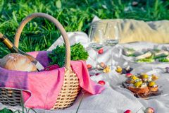 Picnic in forest on sunny meadow, blanket, wicker basket, wine glasses, bruschetta with cheese and pear, snacks, fruit, apples,. Picnic in the forest on sunny royalty free stock photography