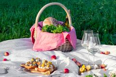Picnic in forest on sunny meadow, blanket, wicker basket, wine glasses, bruschetta with cheese and pear, snacks, fruit, apples,. Picnic in the forest on sunny stock photos