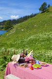 Picnic in french alps Stock Photography