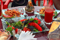 A picnic in the fresh air, festive table, vegetables, alcohol, m Royalty Free Stock Photography