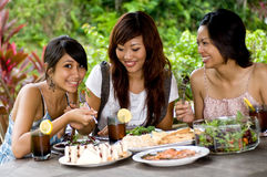 Picnic with friends Stock Photography
