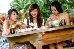 Picnic with friends Royalty Free Stock Photography