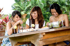 Picnic with friends Royalty Free Stock Photos