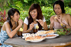 Picnic with friends Stock Image