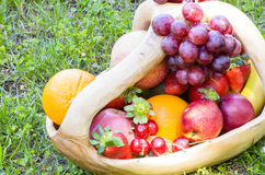 Picnic with Fruit Royalty Free Stock Images