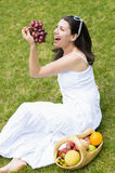 Picnic with Fruit Royalty Free Stock Image