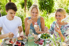 Picnic fun. Group of three friends having an outdoors picnic in the summer garden Royalty Free Stock Image