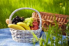 Picnic in the garden. Basket with fruits. Stock Image