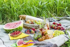Picnic in the garden Royalty Free Stock Photography