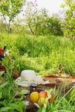 Picnic in the garden Stock Photos