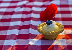 Picnic at the gardens. This is a desert served as part of a picnic fit for a queen. The meal emulates a meal prepared for queen Elizabeth II on her visit to the Royalty Free Stock Images
