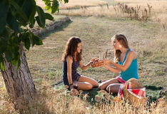 Picnic girls Royalty Free Stock Images