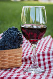 Picnic. Glass of wine and wine grapes on red checkered table cloth in park Royalty Free Stock Images