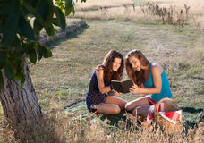 Picnic and good book Royalty Free Stock Photography