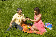 Picnic on grass Stock Image