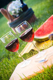Picnic on the grass. Glasses of red wine with fruits and picnic basket Stock Photography