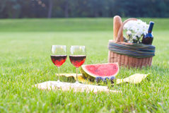Picnic on the grass. With red wine Stock Image