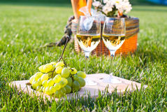 Picnic on the grass. White wine with grapes and picnic basket Stock Image