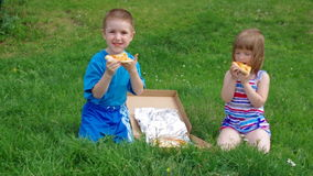 Picnic on the grass. boy and small girl  have a dinner with pizza on the meadow . stock video footage