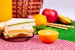 Picnic on the grass. Red checked tablecloth, basket, healthy food sandwich and fruit, orange juice.  Summer Time Rest Stock Photo