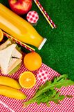 Picnic on the grass. Red checked tablecloth, basket, healthy food sandwich and fruit, orange juice. Top view.  Summer Time Rest. Flat lay Stock Photos