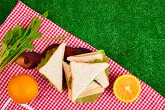 Picnic on the grass. Red checked tablecloth, basket, healthy food sandwich and fruit, orange juice. Top view.  Summer Time Rest. Flat lay Royalty Free Stock Image