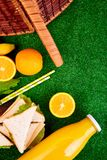 Picnic on the grass. Red checked tablecloth, basket, healthy food sandwich and fruit, orange juice. Top view.  Summer Time Rest. Flat lay Stock Photography